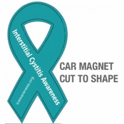 IC Awareness Car Magnets